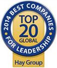 Hay Group's Annual Exclusive List of Best Companies
